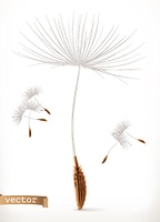 Dandelion seeds, 3d vector icon