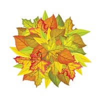 Autumn leaves vector concept. Flat design. Ball from colored leaves of maple, willow, linden trees, white free space around. For photo decoration, nature concept, seasonal promotion and ad design. Autumn Leaves Vector Concept in Flat Design  . Autumn Leav