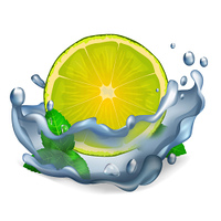 Juicy lemon or lime and green leaves of peppermint with water drops closeup icon isolated on white vector illustration.. Juicy Lemon or Lime and Leaves of Peppermint Icon