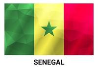 Senegal flags design vector