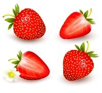 A set of fresh strawberry. Vector illustration.