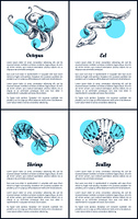Octopus and eel posters set with headlines, text sample. Shrimp and scallop unprepared marine ingredients of exquisite dishes vector illustration. Octopus and Eel Posters Set Vector Illustration