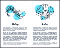 Shrimp and scallop posters set monochrome sketches outline. Sall free-swimming crustacean with elongated body uncooked seafood vector illustration. Shrimp and Scallop Posters Set Vector Illustration