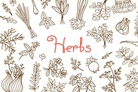 Background with various herbs used in cooking and inscription for the design of menus, recipes and packaging products. Vector illustration.. Background with various herbs used in cooking and inscription for the design of menus, recipes and packaging produ