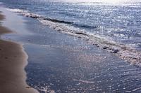 宗谷岬の海岸
