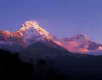アンナプルナ連峰の朝焼け