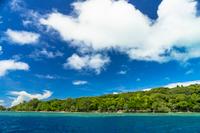 ビッグ・ドロップ・オフのサンゴ礁の海