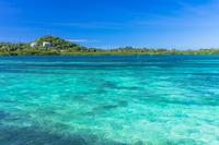 コロール島の美しい海