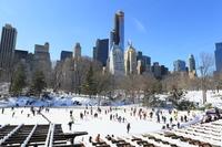 スケートリンク セントラルパーク
