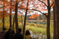 五色沼で紅葉狩り