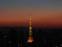朝焼けの東京タワー