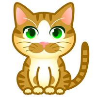 猫 茶トラ白