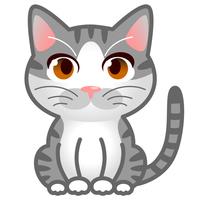 猫 サバトラ白