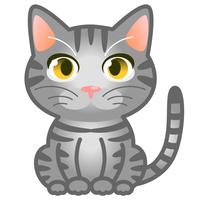 猫 サバトラ