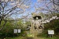 桜と鷹取山の磨崖仏