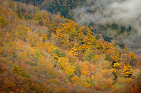 秋の戦場ヶ原から見た山肌