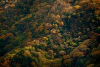 秋の中禅寺湖湖畔から見た山肌