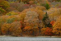秋の中禅寺湖湖畔