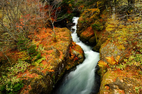 紅葉の竜頭滝