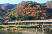 京都 嵐山の秋