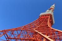 東京タワー 見上げ