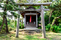 神明社 木の鳥居 葉山