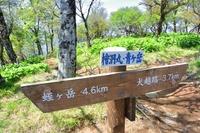 西丹沢檜洞丸山頂の道標