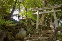 多摩川浅間神社の富士塚
