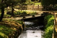 小川のせせらぎと小さな橋