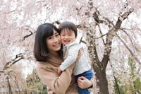枝垂れ桜と家族