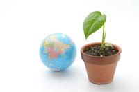 エコロジーイメージ―地球儀と植物