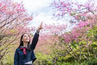 桜の前で指を差す女学生