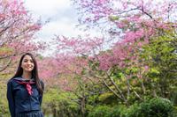 桜の前で笑顔で立つ女学生