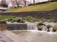 春の水無瀬川