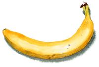 完熟バナナ1本