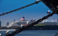 晴れた横浜港の客船と海鳥