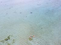 空撮 ビキニ姿で泳ぐ女性二人