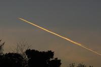 黄金色の飛行機雲