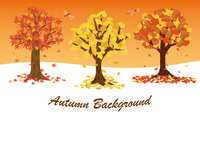 秋の木の背景素材
