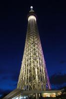 東京の高層タワーのイルミネーション