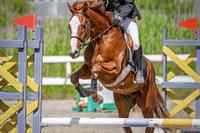 馬術競技の風景