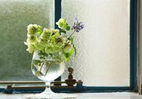 窓際の花の飾り付け