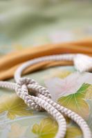 帯と帯留め和のイメージ