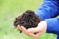 無農薬堆肥