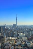 文京シビックセンターより望む東京風景