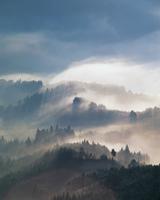 吉野の雲海