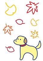 犬 秋の彩り