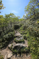 徳島県三好市 剣山山頂への遊歩道