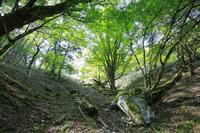 徳島県三好市 剣山山頂への遊歩道からの風景
