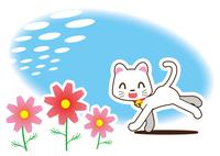 秋桜と白猫